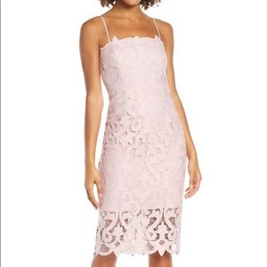 Still in store! Blush Bardot Lace Sheath Dress